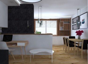 Salon i kuchnia